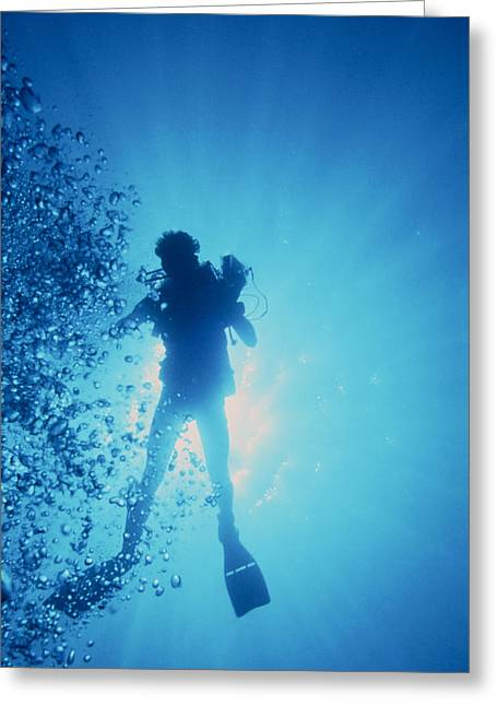 Scuba Diving Greeting Cards - Scuba Diver With Camera In The Red Sea Greeting Card by Geoff Tompkinson