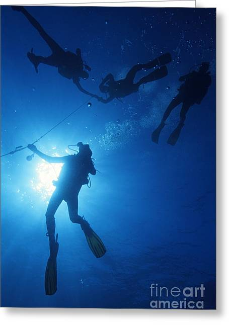 Best Sellers -  - Undersea Photography Greeting Cards - Scuba Divers silhouettes  Greeting Card by Sami Sarkis