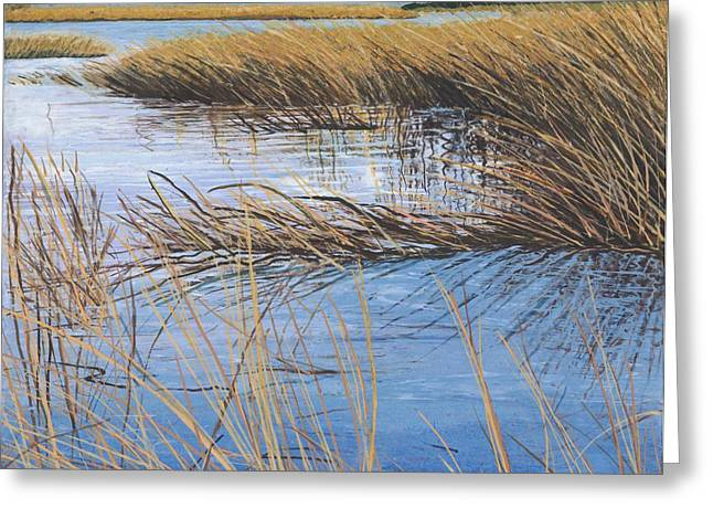 Ocean Vista Greeting Cards - Sea Grass Greeting Card by Meg Black