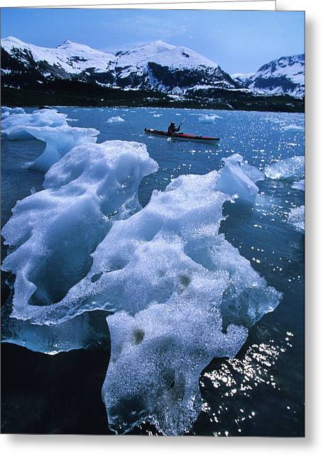 Prince William Greeting Cards - Sea Kayaking Past Ice Bergs In A Small Greeting Card by Bill Hatcher