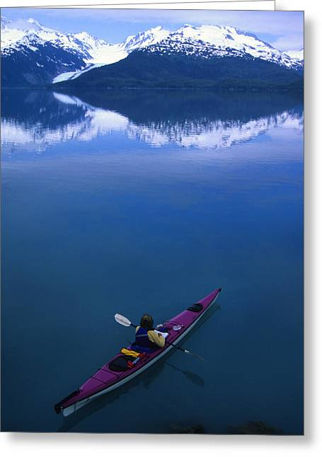 Prince William Greeting Cards - Sea Kayaking Through Still Water Greeting Card by Bill Hatcher