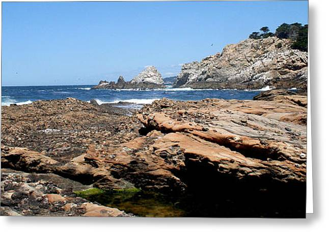 Big Sur California Greeting Cards - Sea Level Greeting Card by PJQandFriends Photography