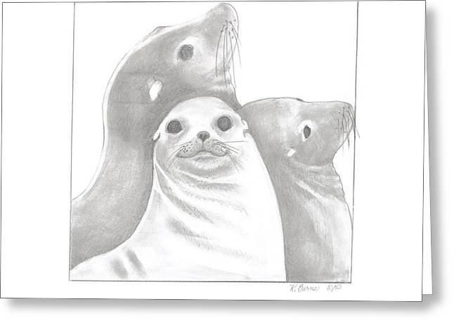 Sea Lions Drawings Greeting Cards - Sea Lion Family Greeting Card by Kathy Burns