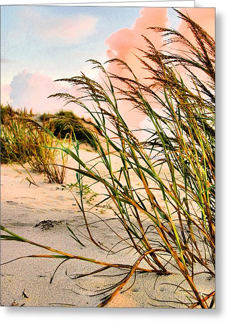 Sea Oats Greeting Cards - Sea Oats and Dunes Greeting Card by Kristin Elmquist