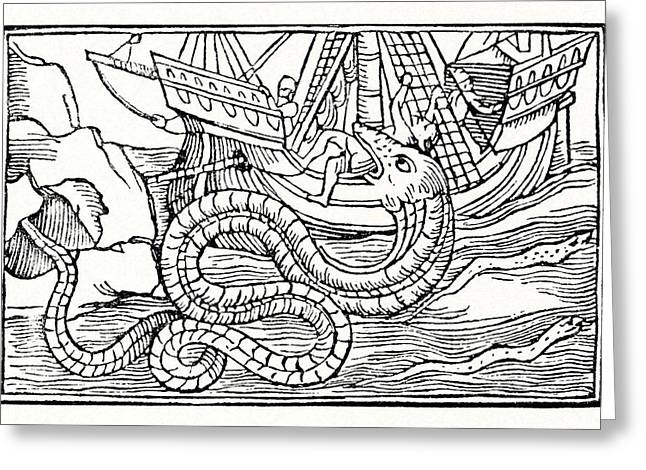 The Fearful Greeting Cards - Sea Serpent, 16th Century Artwork Greeting Card by Cci Archives