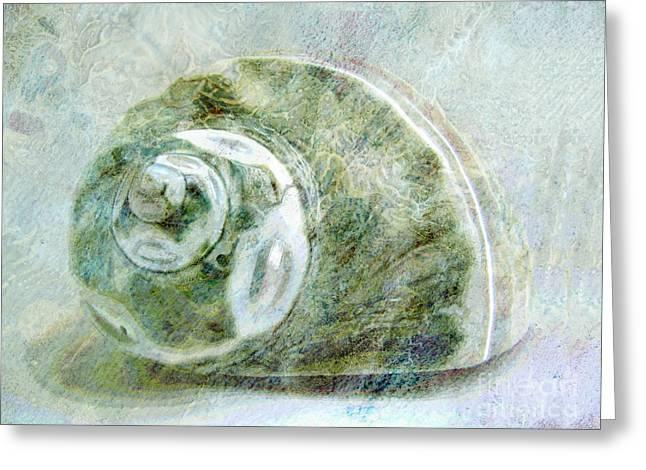 Sea Shell Art Greeting Cards - Sea Shell I Greeting Card by Ann Powell