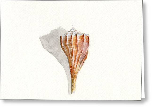 York Beach Paintings Greeting Cards - Sea Shell Watercolor Greeting Card by Sheryl Heatherly Hawkins