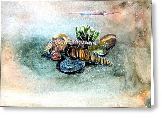 Sea Shell Art Drawings Greeting Cards - Sea Shells Greeting Card by Mindy Newman