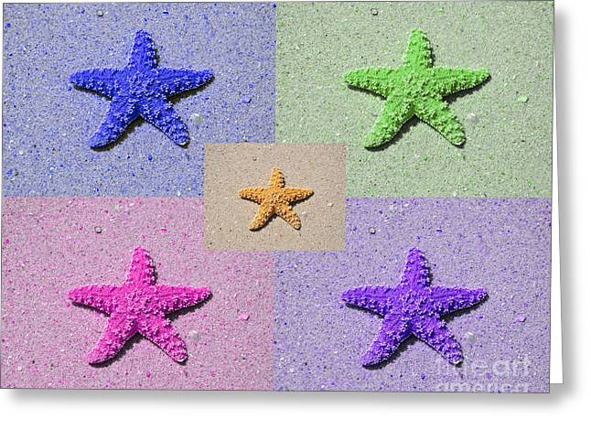 Star Fish Greeting Cards - Sea Star Serigraph - 5 Stars Greeting Card by Al Powell Photography USA