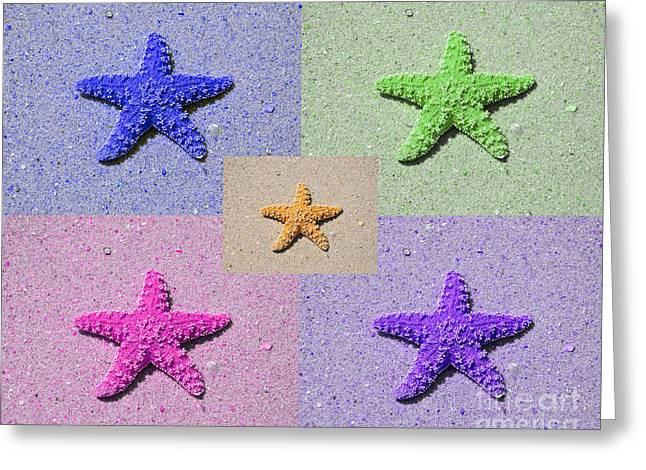Sea Star Serigraph - 5 Stars Greeting Card by Al Powell Photography USA