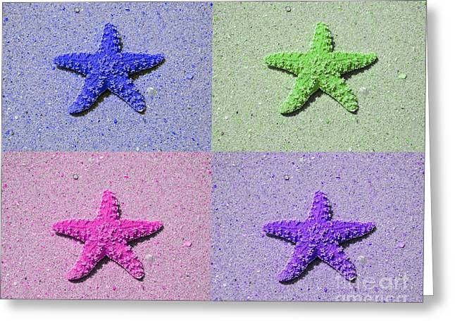 Star Fish Greeting Cards - Sea Star Serigraph - 4 Stars Greeting Card by Al Powell Photography USA