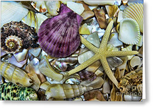 Life Is Beautiful Greeting Cards - Sea Treasure - landscape Greeting Card by Paul Ward