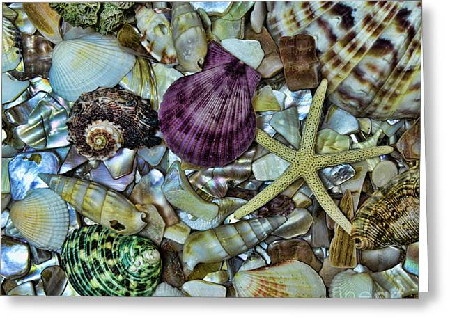 Life Is Beautiful Greeting Cards - Sea Treasure - square format Greeting Card by Paul Ward