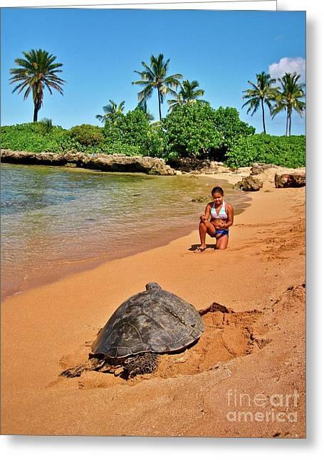 Laniakea Beach Greeting Cards - Sea Turtle at Laniakea Greeting Card by Joe Finney