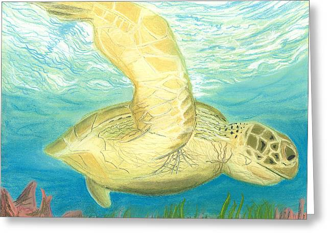 Sea Pastels Greeting Cards - Sea Turtle  Greeting Card by Jackie Novak