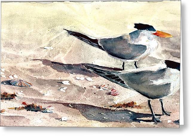 Seabirds Greeting Cards - SeaBird Buffet Greeting Card by David Ignaszewski
