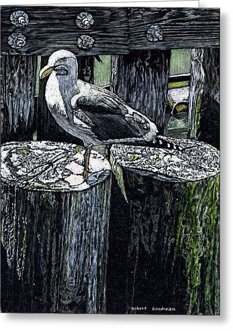 Seabirds Mixed Media Greeting Cards - Seagull at Pier Greeting Card by Robert Goudreau