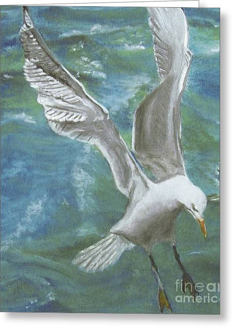 Fauna Pastels Greeting Cards - Seagull Greeting Card by Jim Barber Hove