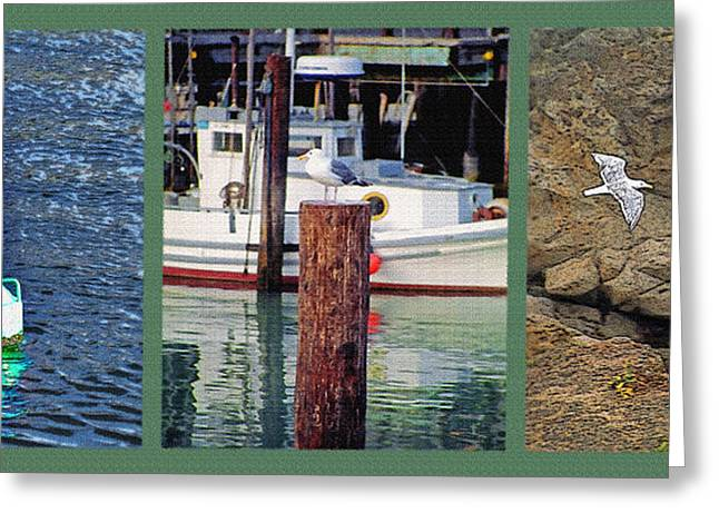 Flying Seagull Mixed Media Greeting Cards - Seagull Triptych Greeting Card by Steve Ohlsen
