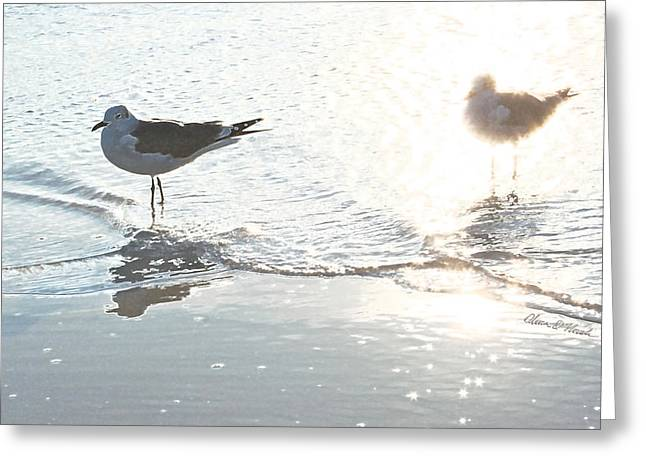 Two Pyrography Greeting Cards - Seagulls in a Shimmer Greeting Card by Olivia Novak