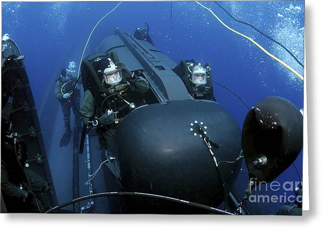 Undersea Photography Greeting Cards - Seal Delivery Vehicle Team Members Greeting Card by Stocktrek Images