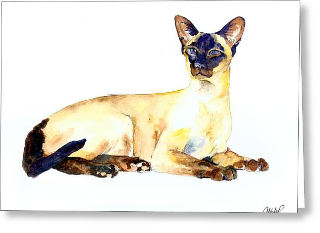 Sphynx Cat Portrait Greeting Cards - Seal Point Siamese Cat old Greeting Card by Christy  Freeman