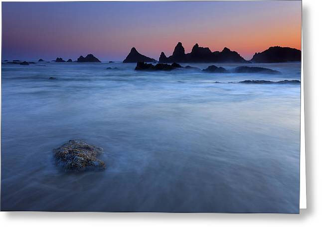 Seals Greeting Cards - Seal Rock Dusk Greeting Card by Mike  Dawson