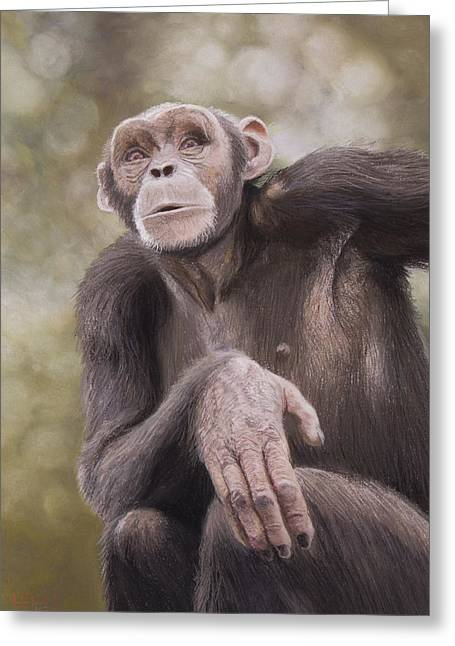 Chimpanzee Pastels Greeting Cards - Searching for an answer Greeting Card by Leigh Rust