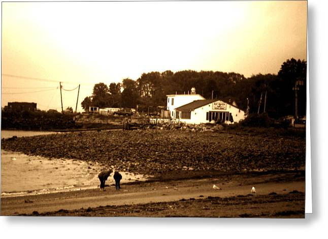 Maine Beach Greeting Cards - Searching For Shells Greeting Card by Utopia Concepts