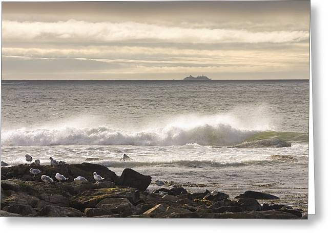 Maine Islands Greeting Cards - Seascape Cruise Ship Mount Desert Island Maine Photograph Greeting Card by Keith Webber Jr