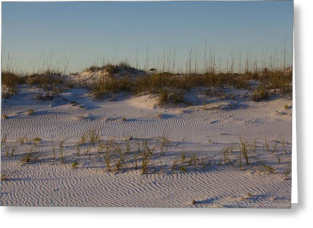 Seaside Dunes 4 Greeting Card by Charles Warren