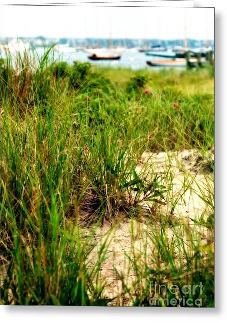 Massachusetts Coast Greeting Cards - Seaside Greeting Card by Hideaki Sakurai
