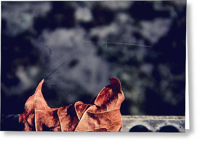 Season Of Fire Greeting Card by Odd Jeppesen