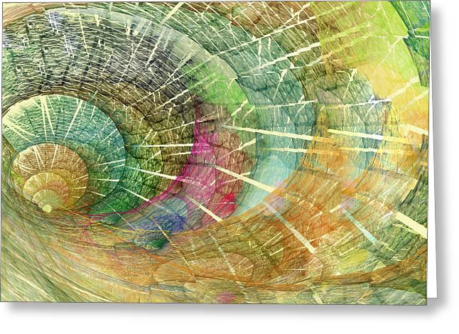 Season of the Shell Greeting Card by Betsy A  Cutler