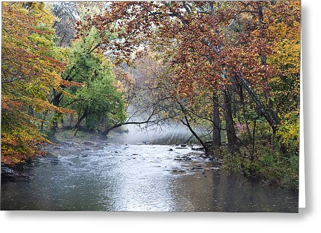 Seasons Change Greeting Card by Bill Cannon