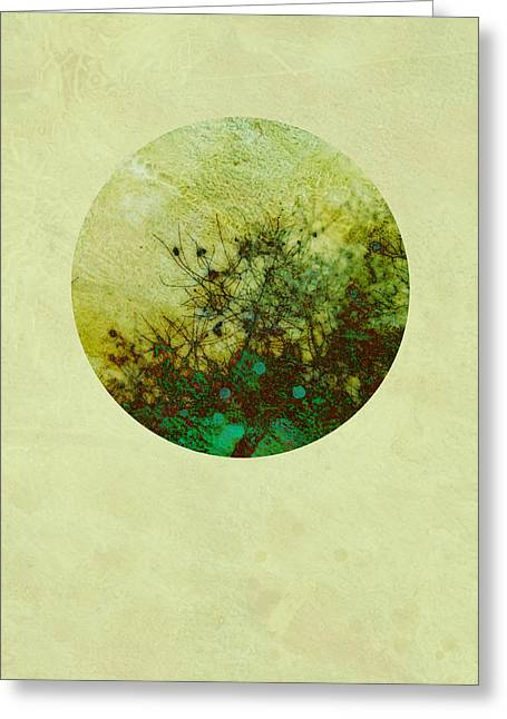 Moss Green Greeting Cards - Seasons of My Garden Greeting Card by Ann Powell