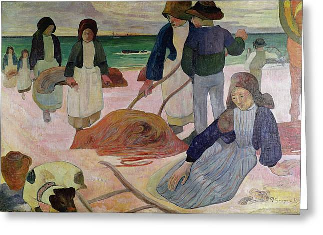 Gatherers Greeting Cards - Seaweed Gatherers Greeting Card by Paul Gauguin