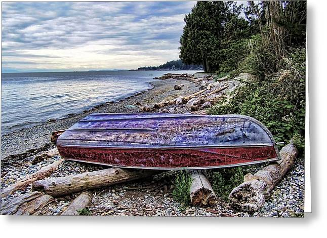 Queen Charlotte Sound Greeting Cards - Seaworthy Greeting Card by Diana Cox