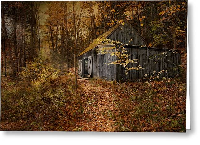 Shack Greeting Cards - Secluded Greeting Card by Robin-lee Vieira