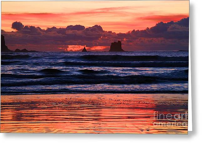 Forks Washington Greeting Cards - Second Beach Fire In The Sky Greeting Card by Adam Jewell