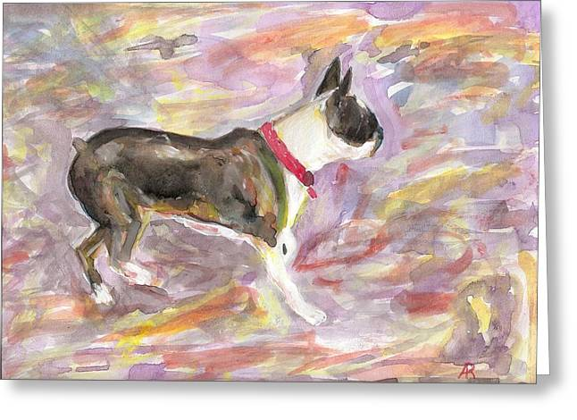 Boston Terrier Watercolor Greeting Cards - See Gull Greeting Card by Arthur Rice