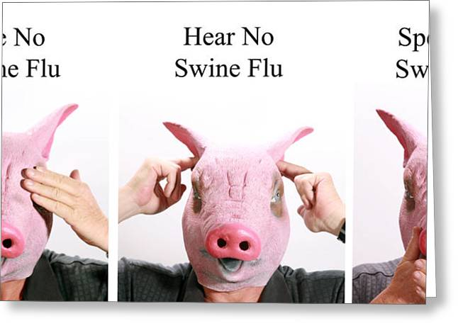 Hear No Evil Greeting Cards - See no Swine flu  Hear no Swine flu   Speak no Swine flu Greeting Card by Michael Ledray