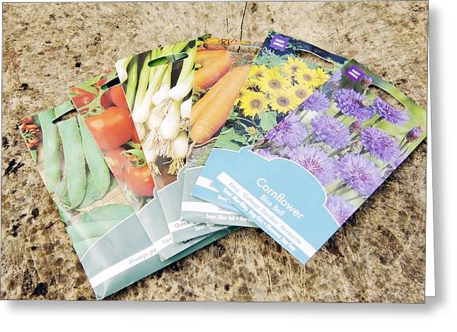 Spring Onion Greeting Cards - Seed Packs Greeting Card by Johnny Greig