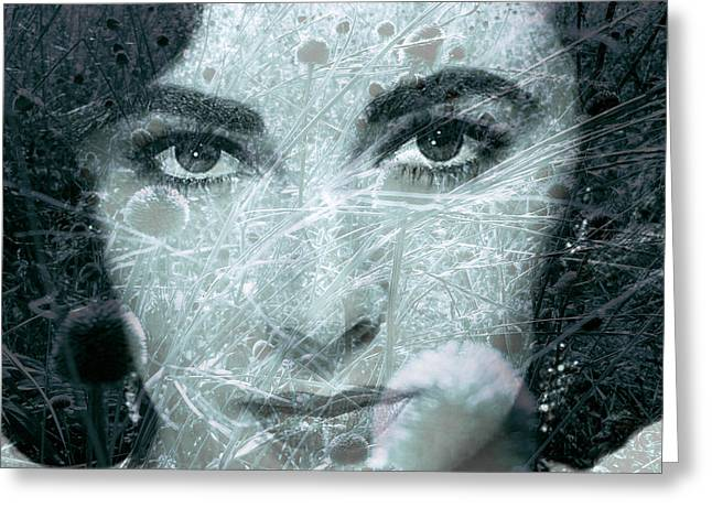 Liz Taylor Greeting Cards - Seedy Liz Greeting Card by Trish Hale