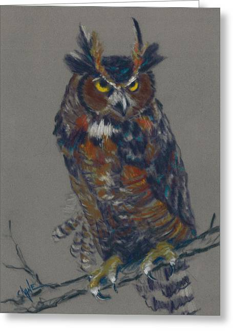 Horns Pastels Greeting Cards - Seeking Owl  Greeting Card by Christine Camp