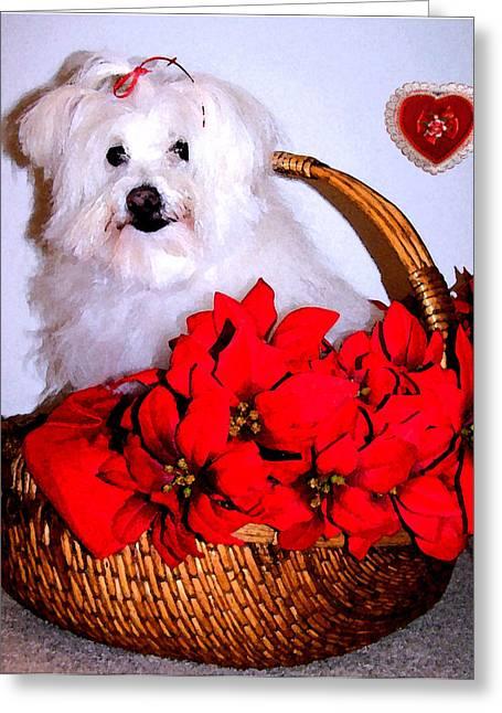 Maltese Greeting Cards - Sending Love Greeting Card by Vijay Sharon Govender
