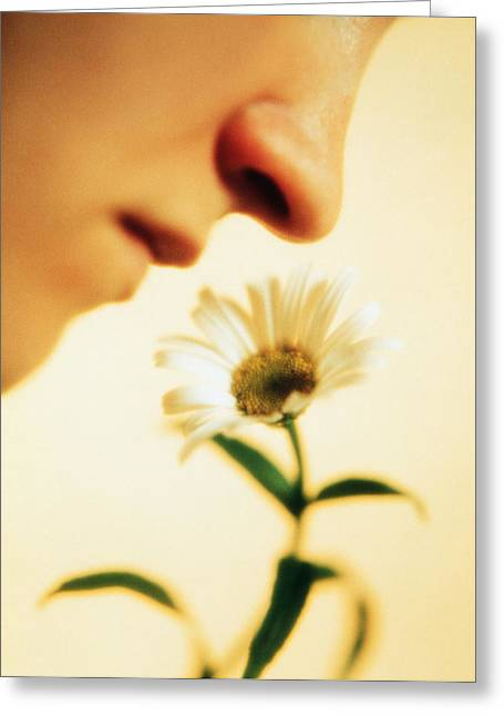 Spring Fever Greeting Cards - Sense Of Smell Greeting Card by Cristina Pedrazzini