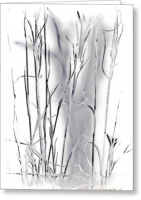 Safe Haven Greeting Cards - Sentinel Shadow Greeting Card by Vicki Ferrari Photography