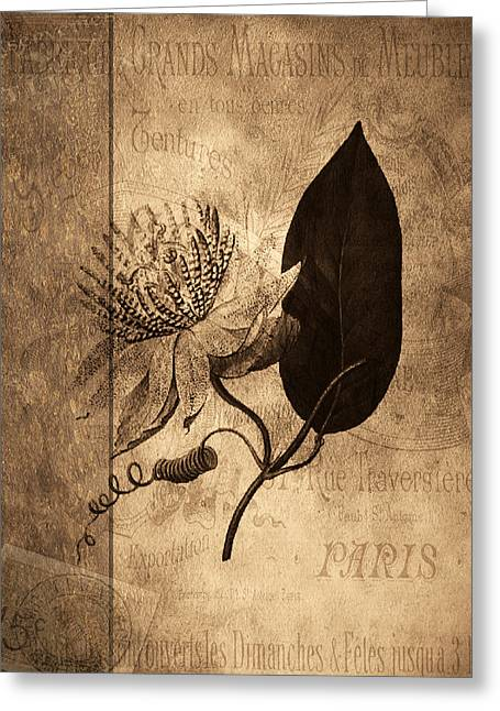 Sepia Botanical Greeting Card by Bonnie Bruno