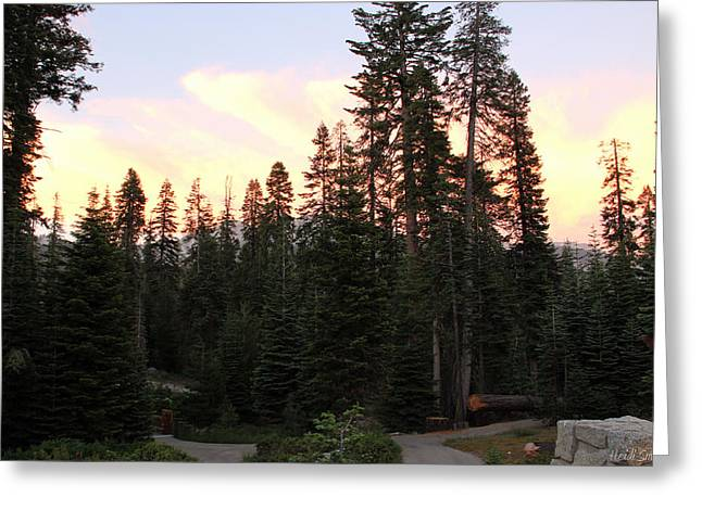 Sequoia National Park Greeting Cards - Sequoia Sunset Greeting Card by Heidi Smith